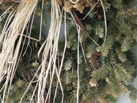 phoebe nest in wreath