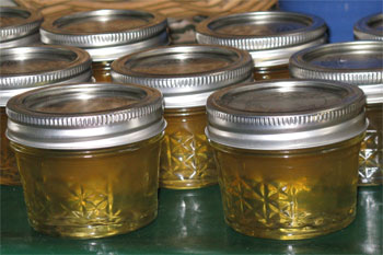 dandelion flower jelly