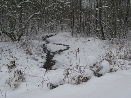 winter creek