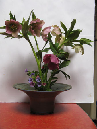 lenten rose and lungwort bouquet