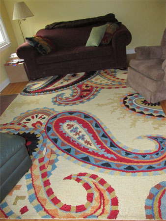 living room rug 2