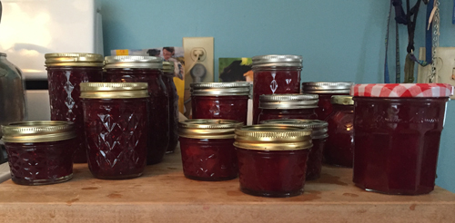 2 batches homemade jam