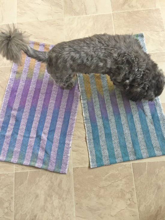 2 striped towels with Jack photobombing