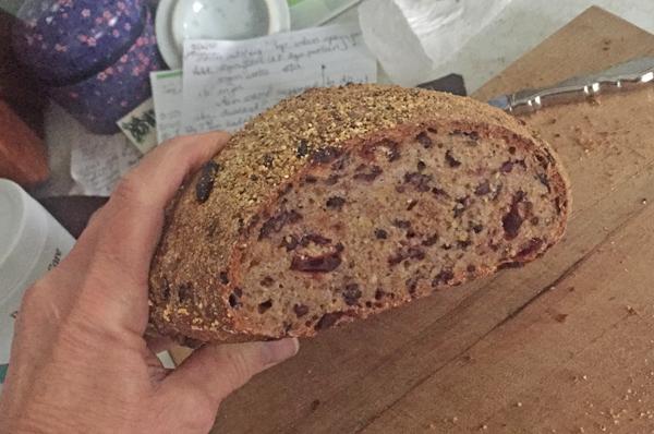 cranberry-rice-cornmeal sourdough bread