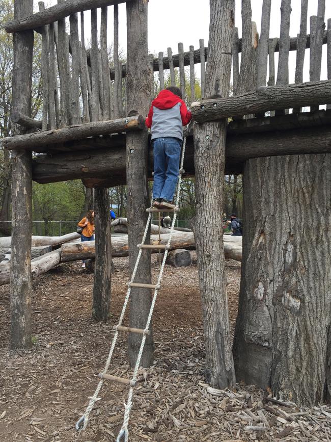 zoo climbing area