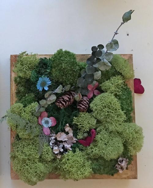 my moss wall art